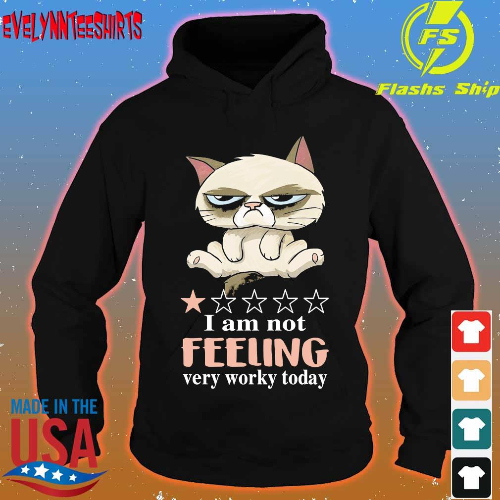 Grumpy Cat I am not feeling very worky today s hoodie