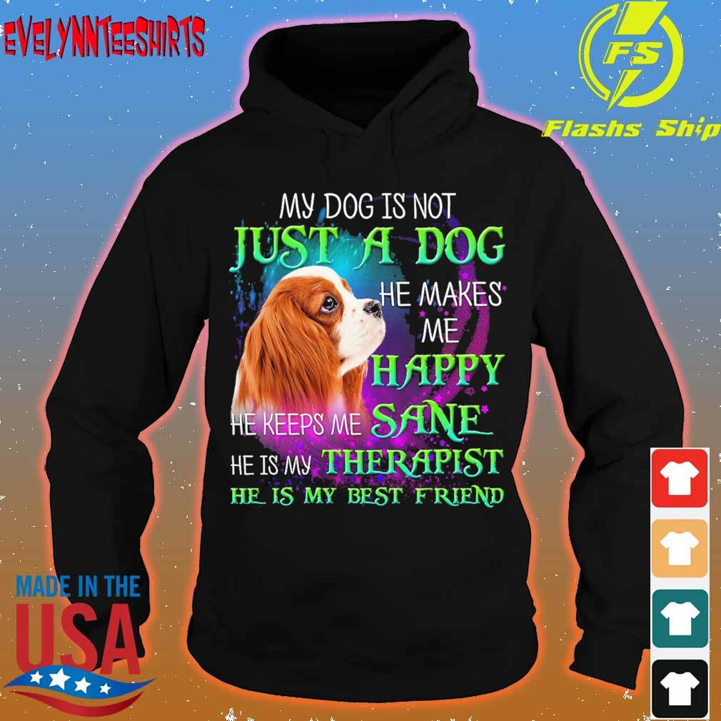 My dog is not just a dog He makes Me Happy He keeps Me sane he is My Therapist s hoodie