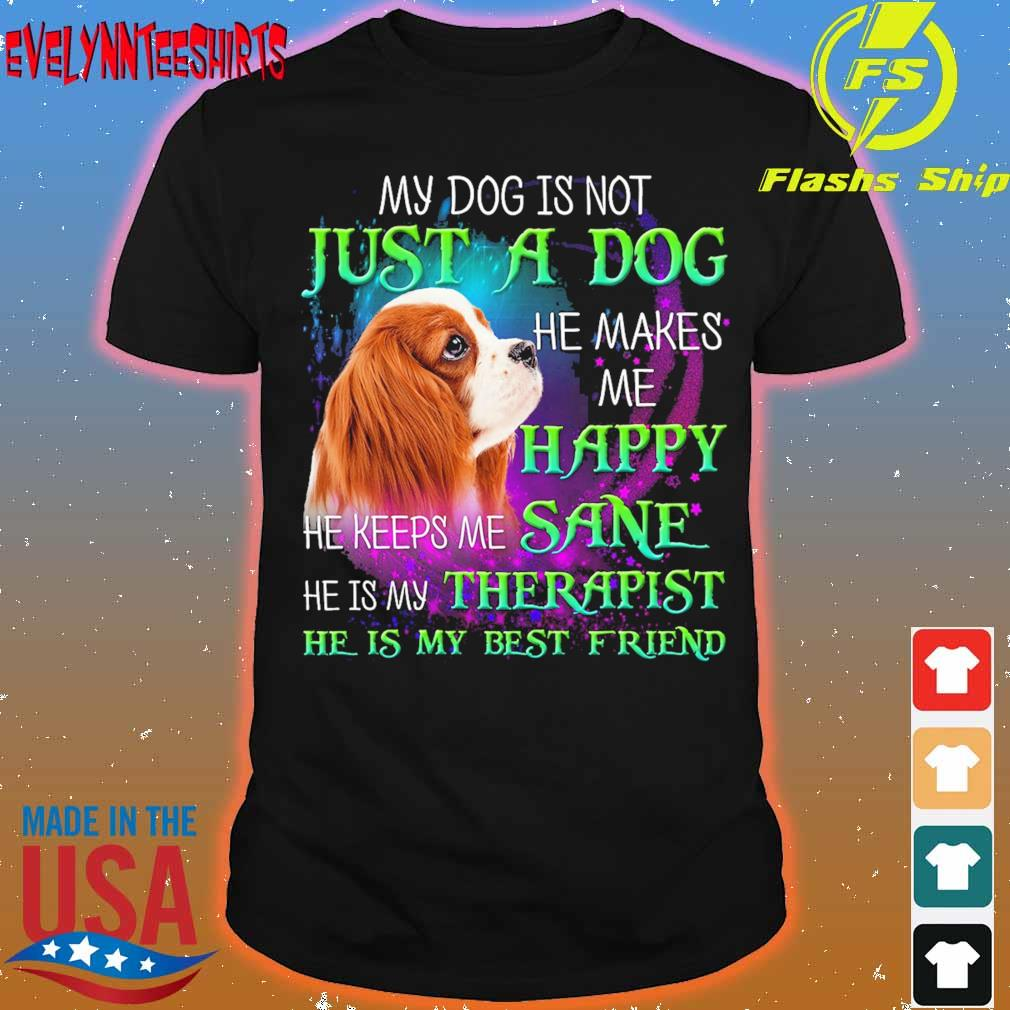My dog is not just a dog He makes Me Happy He keeps Me sane he is My Therapist shirt